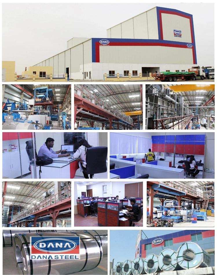GI PPGI PPAL PPGL Supplier Exporter Coils & Sheets